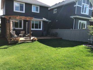 Photo 38: 3901 ROBINS Crescent in Edmonton: Zone 59 House for sale : MLS®# E4196395