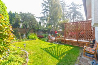 Photo 23: 1188 Craigflower Rd in : Es Kinsmen Park Single Family Detached for sale (Esquimalt)  : MLS®# 855294