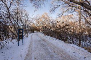 Photo 43: 6 9745 92 Street in Edmonton: Zone 18 Townhouse for sale : MLS®# E4223409