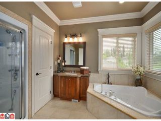 "Photo 9: 23157 80TH Avenue in Langley: Fort Langley House for sale in ""CASTLE HILL/FOREST KNOLLS"" : MLS®# F1014538"