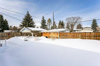 Photo 31: 16114 83 Avenue in Edmonton: Zone 22 House for sale : MLS®# E4191972