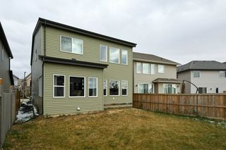 Photo 38: 3954 CLAXTON Loop SW in Edmonton: Zone 55 House for sale : MLS®# E4219083