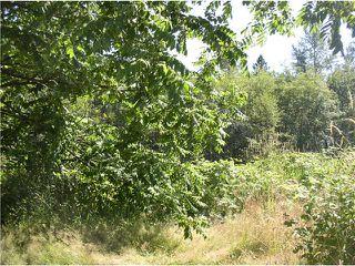 "Photo 9: 24344 DEWDNEY TRUNK Road in Maple Ridge: Cottonwood MR House for sale in ""Rosedale Gardens"" : MLS®# V844317"