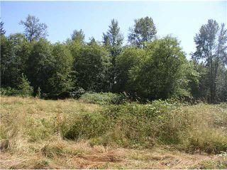 "Photo 4: 24344 DEWDNEY TRUNK Road in Maple Ridge: Cottonwood MR House for sale in ""Rosedale Gardens"" : MLS®# V844317"