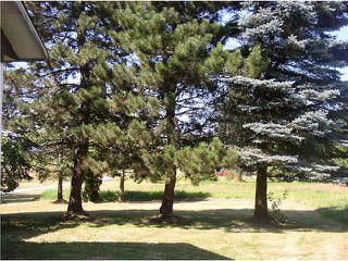 "Photo 8: 24344 DEWDNEY TRUNK Road in Maple Ridge: Cottonwood MR House for sale in ""Rosedale Gardens"" : MLS®# V844317"
