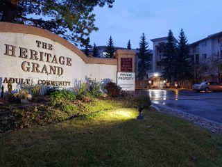 Photo 2: 101 10915 21 Avenue in Edmonton: Zone 16 Condo for sale : MLS®# E4195040