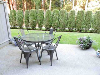 """Photo 26: 24 7640 BLOTT Street in Mission: Mission BC Townhouse for sale in """"AMBERLEA"""" : MLS®# R2469418"""