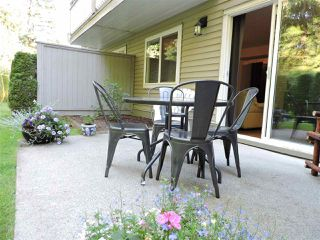 """Photo 27: 24 7640 BLOTT Street in Mission: Mission BC Townhouse for sale in """"AMBERLEA"""" : MLS®# R2469418"""