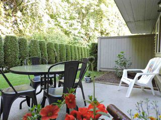 """Photo 29: 24 7640 BLOTT Street in Mission: Mission BC Townhouse for sale in """"AMBERLEA"""" : MLS®# R2469418"""
