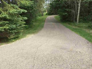 Photo 18: 244025 TWP RD 470: Rural Wetaskiwin County House for sale : MLS®# E4210000