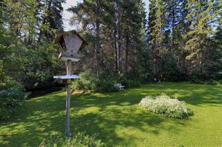 Photo 12: 244025 TWP RD 470: Rural Wetaskiwin County House for sale : MLS®# E4210000