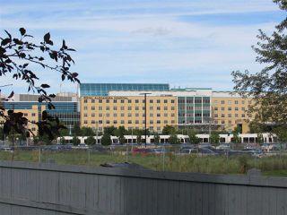 Photo 5: 61 10909 106 Street in Edmonton: Zone 08 House Half Duplex for sale : MLS®# E4212244