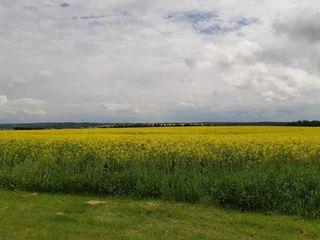 Photo 4: 3 Coal Mine Road: Rural Sturgeon County Rural Land/Vacant Lot for sale : MLS®# E4219371