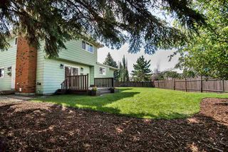 Photo 28: 1043 58 Street in Edmonton: Zone 29 House for sale : MLS®# E4167294