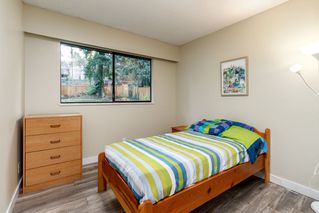 Photo 8: 241 ANGELA Drive in Port Moody: College Park PM House for sale : MLS®# R2417726