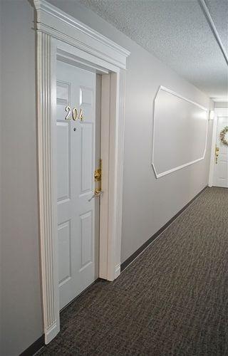 Photo 27: 204 10320 113 Street in Edmonton: Zone 12 Condo for sale : MLS®# E4189893