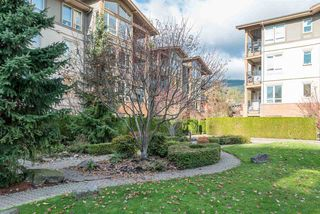 "Photo 24: 101 1111 E 27TH Street in North Vancouver: Lynn Valley Condo for sale in ""Branches"" : MLS®# R2515852"