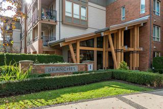 "Photo 2: 101 1111 E 27TH Street in North Vancouver: Lynn Valley Condo for sale in ""Branches"" : MLS®# R2515852"