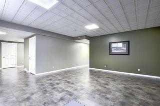 Photo 29: 209 Prestwick Estate Way SE in Calgary: McKenzie Towne Detached for sale : MLS®# A1058206