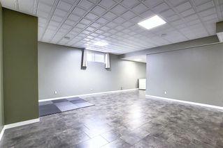 Photo 28: 209 Prestwick Estate Way SE in Calgary: McKenzie Towne Detached for sale : MLS®# A1058206