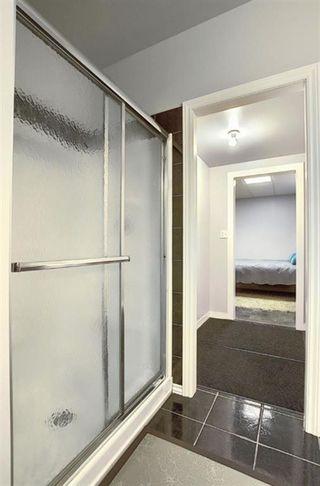 Photo 37: 209 Prestwick Estate Way SE in Calgary: McKenzie Towne Detached for sale : MLS®# A1058206