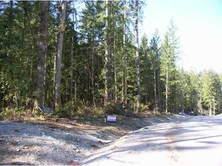 Photo 1: 12905 246TH Street in Maple Ridge: Websters Corners Land for sale : MLS®# V814107