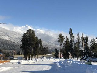 Photo 5: 1463 8TH Place in Valemount: Valemount - Town Land for sale (Robson Valley (Zone 81))  : MLS®# R2428430