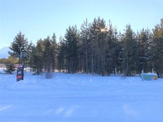 Photo 4: 1463 8TH Place in Valemount: Valemount - Town Land for sale (Robson Valley (Zone 81))  : MLS®# R2428430