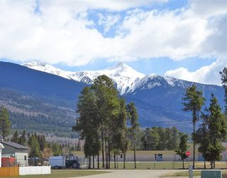 Photo 2: 1463 8TH Place in Valemount: Valemount - Town Land for sale (Robson Valley (Zone 81))  : MLS®# R2428430