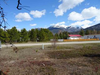 Photo 9: 1463 8TH Place in Valemount: Valemount - Town Land for sale (Robson Valley (Zone 81))  : MLS®# R2428430