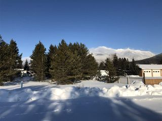 Photo 6: 1463 8TH Place in Valemount: Valemount - Town Land for sale (Robson Valley (Zone 81))  : MLS®# R2428430