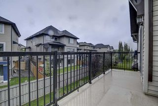 Photo 44: 925 ARMITAGE Court in Edmonton: Zone 56 House for sale : MLS®# E4184255
