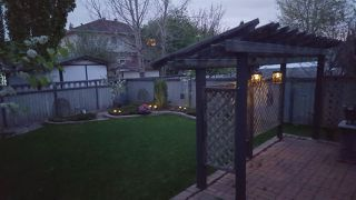 Photo 49: 3908 30 Street in Edmonton: Zone 30 House for sale : MLS®# E4203508