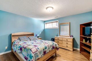 Photo 22: 736 PRESTWICK Circle SE in Calgary: McKenzie Towne Detached for sale : MLS®# A1033213