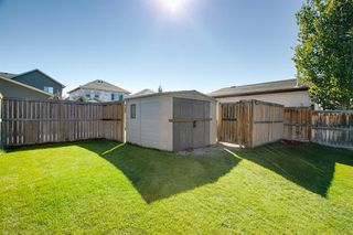 Photo 26: 736 PRESTWICK Circle SE in Calgary: McKenzie Towne Detached for sale : MLS®# A1033213