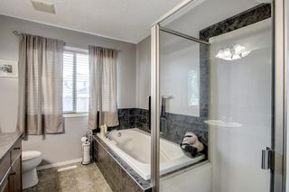 Photo 15: 736 PRESTWICK Circle SE in Calgary: McKenzie Towne Detached for sale : MLS®# A1033213