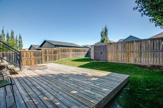 Photo 23: 736 PRESTWICK Circle SE in Calgary: McKenzie Towne Detached for sale : MLS®# A1033213