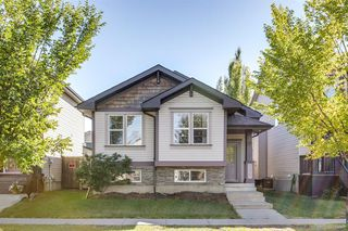 Main Photo: 736 PRESTWICK Circle SE in Calgary: McKenzie Towne Detached for sale : MLS®# A1033213