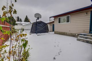 Photo 23: 352 Deerview Drive SE in Calgary: Deer Ridge Detached for sale : MLS®# A1043730