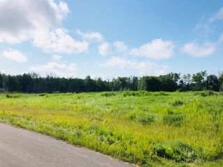 Photo 4: 25 51565 RGE RD 223: Rural Strathcona County Rural Land/Vacant Lot for sale : MLS®# E4168446