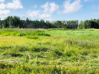 Photo 2: 25 51565 RGE RD 223: Rural Strathcona County Rural Land/Vacant Lot for sale : MLS®# E4168446