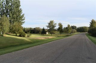 Photo 28: 50251 RGE RD 234: Rural Leduc County House for sale : MLS®# E4173188