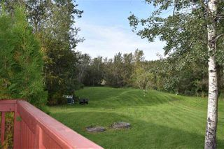 Photo 25: 50251 RGE RD 234: Rural Leduc County House for sale : MLS®# E4173188