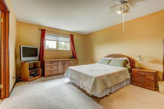 Photo 14: 723 MACEWAN VALLEY Road NW in Calgary: MacEwan Glen Detached for sale : MLS®# C4305299