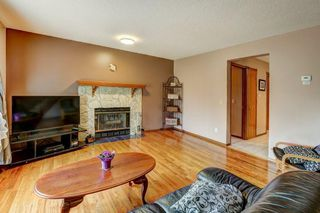 Photo 10: 723 MACEWAN VALLEY Road NW in Calgary: MacEwan Glen Detached for sale : MLS®# C4305299