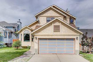Main Photo: 723 MACEWAN VALLEY Road NW in Calgary: MacEwan Glen Detached for sale : MLS®# C4305299