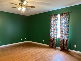 Photo 19: 5071 1 Avenue: New Sarepta House for sale : MLS®# E4204152
