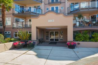Photo 4: 4 1083 Tillicum Rd in : Es Kinsmen Park Condo for sale (Esquimalt)  : MLS®# 851611