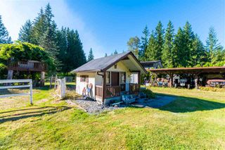 Photo 19: 12265 CARR Street in Mission: Stave Falls House for sale : MLS®# R2494893
