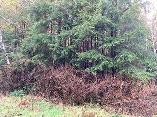 Photo 5: E-460 Quatsino Rd in : NI Port Hardy Land for sale (North Island)  : MLS®# 862757